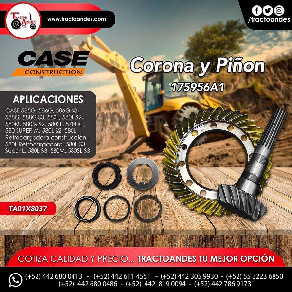 Corona y piñon - 175956A1